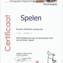 Kynotrain Spelen Karin Rommers