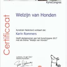 Kynotrain Welzijn Karin Rommers