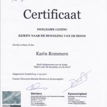 Kijken naar beweging Karin Rommers