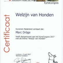 Kynotrain Welzijn Marc Dröge